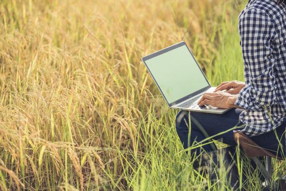 В Минсельхозе обсудили техническую модернизацию сельского хозяйства и сельхозмашиностроения