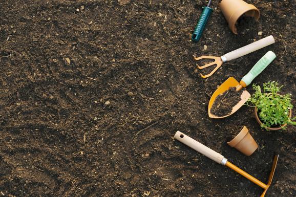 В Минсельхозе обсудили подготовку и проведение весенне-полевых работ